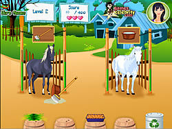 Horse Care Apprenticeships