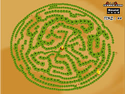 Maze fun game – fun game Play 1: Find The Chicken