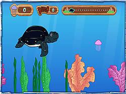 Tuga the Sea Turtle