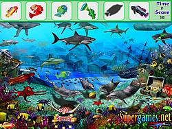 Underwater Fish Hidden Object
