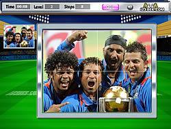 Champions Puzzle 2011
